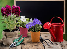 Gardening in spring Stock Photography