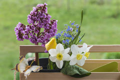 Gardening and spring concept Royalty Free Stock Images