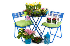 Gardening in spring and summer Royalty Free Stock Photo