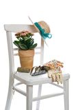 Gardening Still Life. With potted plant and garden tools Royalty Free Stock Images
