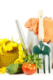 Gardening still life with fresh ripe vegetables and tools Stock Photo