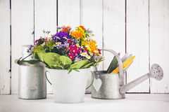 Gardening still-life, vintage processing Stock Image