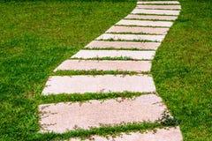 Gardening stone footpath with grass Stock Photo