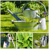 Gardening summer collage Royalty Free Stock Photography