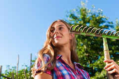 Gardening in summer - woman with grate Stock Photography