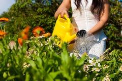 Gardening in summer - woman watering flowers Stock Photos