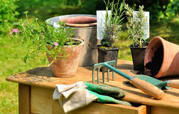 Gardening table Royalty Free Stock Image