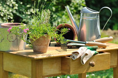Gardening table Royalty Free Stock Photography