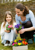 Gardening time Stock Image