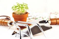 Gardening tool Stock Image