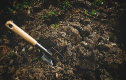 Gardening tool on soil. Background Stock Photography