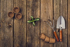 Gardening tools and accessories on wooden background. Top view Stock Photo
