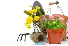 Free Gardening Tools And Flowers Royalty Free Stock Images - 13427549