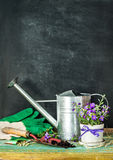 Gardening tools on on black chalkboard - spring Stock Images