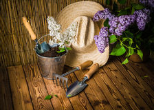 Gardening tools and a branch of a blossoming white lilac Stock Photos