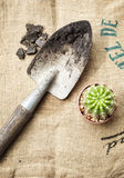 Gardening tools with cactus on sack background. Cactus and Gardening tools with soil and sack background Royalty Free Stock Photography