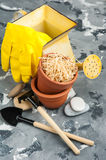 Gardening tools and clay terracotta flower pots Stock Image
