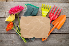 Gardening tools and colorful flowers Stock Photos