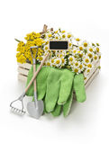 Gardening tools with decoration Royalty Free Stock Image