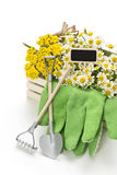 Gardening tools with decoration Royalty Free Stock Images