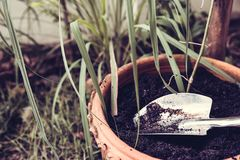Gardening tools on fertile soil stock photography