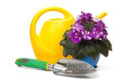 Gardening Tools. Flower pot with garden tools on a white background Royalty Free Stock Images