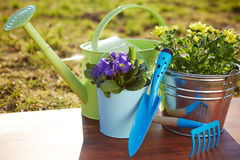 Gardening tools and flowers Stock Photo