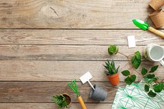Gardening tools and flowers in pot on vintage wooden background. Spring garden works concept. Flat lay composition with copy space. For text captured from above stock image