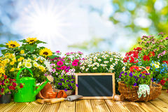 Gardening tools and flowers on the terrace i Royalty Free Stock Photos