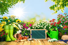 Gardening tools and flowers on the terrace i Royalty Free Stock Photo
