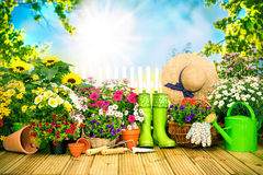 Gardening tools and flowers on the terrace i Stock Photography