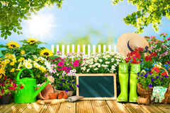 Gardening tools and flowers on the terrace i Royalty Free Stock Images