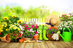 Gardening tools and flowers on the terrace i. N the garden Royalty Free Stock Photos