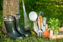Gardening tools. In a garden Royalty Free Stock Images