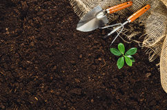 Gardening tools on garden soil texture background top view Royalty Free Stock Images