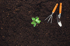 Gardening tools on garden soil texture background top view Stock Photography