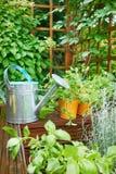 Gardening tools. On garden terrace Stock Photography