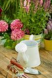 Gardening tools  in the garden Royalty Free Stock Photos