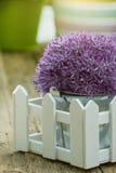 Gardening tools  in the garden Stock Photo