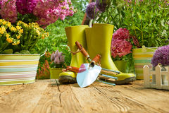 Gardening tools  in the garden Royalty Free Stock Photo