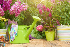 Gardening tools  in the garden. Gardening tools on the terrace in the garden Royalty Free Stock Photos