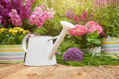 Gardening tools  in the garden Royalty Free Stock Image