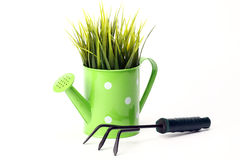 Gardening tools and grass Royalty Free Stock Image