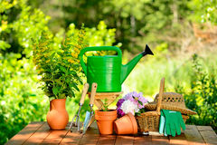 Gardening tools on green background and grass Stock Photos