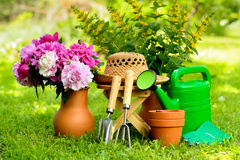 Gardening tools on green background and grass Royalty Free Stock Photos