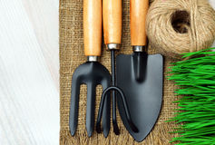 Gardening tools, green grass Stock Photography