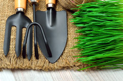 Gardening tools, green grass on sacking. Gardening tools with green grass on sacking background Stock Photos
