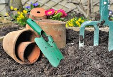 Gardening tools. In the ground and spring flowers background Stock Image