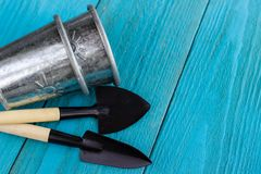 Gardening tools and hyacinth flower. Spring and summer cultivating plants. Earth environment and nature growing close up. Gardening tools and hyacinth flower royalty free stock photos