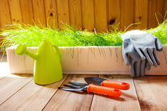 Gardening tools indoors. Gardening tools and green grass Royalty Free Stock Image